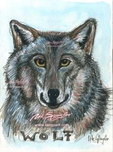 Der Wolf mit dem magischen Blick